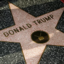 Donald Trump's Walk of Fame star destroyed in Hollywood