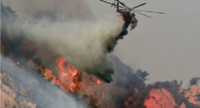 Most Devastating Wildfire in California History Snatches 42 Lives