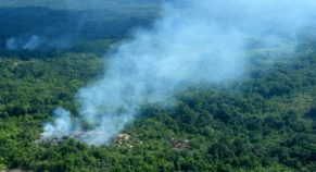 """UN Chief Deeply Concerned By Amazon Fires, Says """"Amazon must be protected"""""""