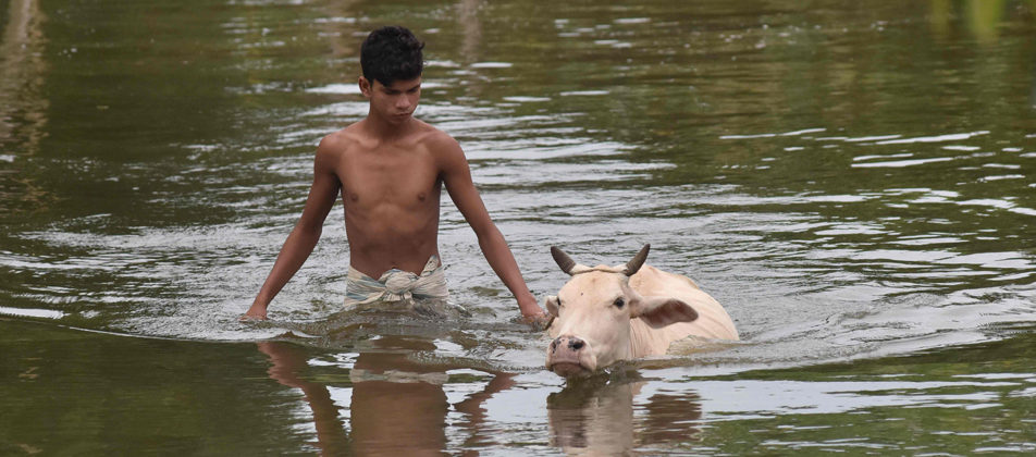 42 Death and over 15 lakh affected in an Incessant downpour hit Assam since last week.