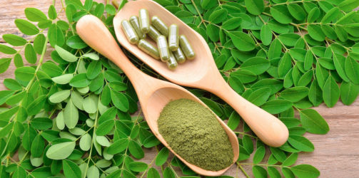 Moringa now is the new superfood.